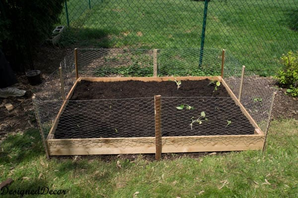 Building a Raised Garden Bed Designed Decor